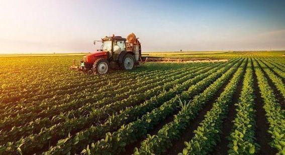 تواجه الزراعة في العالم العربي مشاكل منها ضعف البحث العلمي