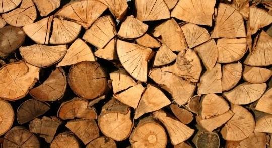أحد أنواع الأخشاب الطبيعية المناسبة للحفر في المملكة العربية السعودية