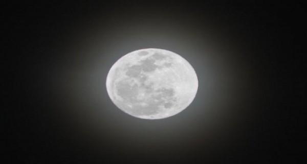 يكون القمر في منتصف الشهر العربي في طور