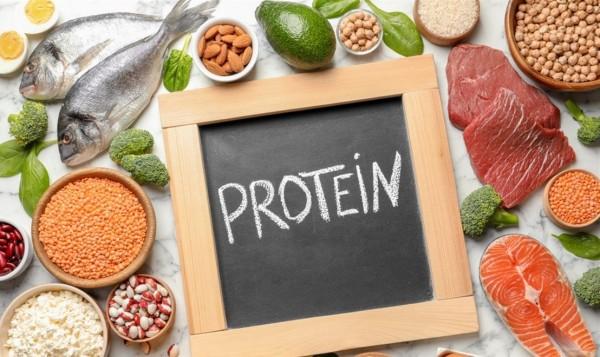 من بين أهمية البروتينات أنها تعمل كأنزيمات صح أم خطأ