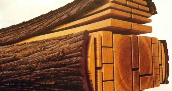 اشرح سؤالاً يتكون الخشب من خلايا وألياف تتخللها فراغات هوائية
