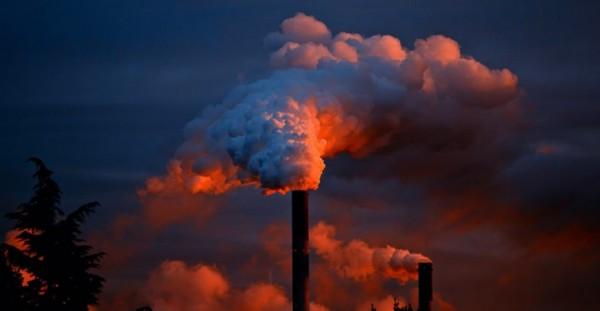ما هي النسبة المئوية لمساهمة الثروة الحيوانية في تلوث البيئة بالغازات الدفيئة