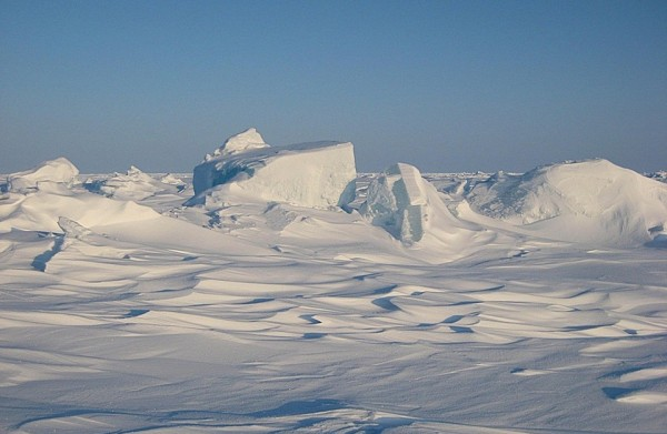 تزداد الكثافة السكانية في المناطق القطبية صح أم خطا