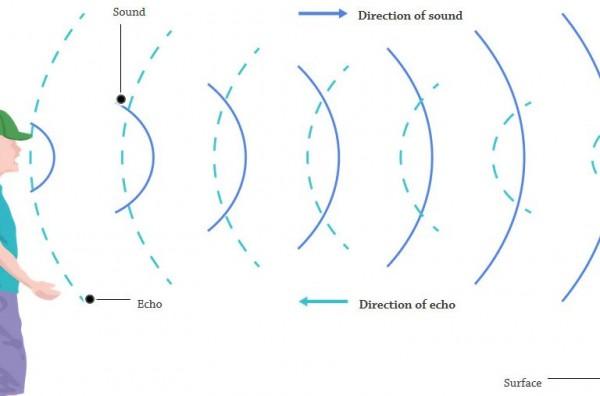 الصدى يعتبر مثال على أن الموجات الصوتية