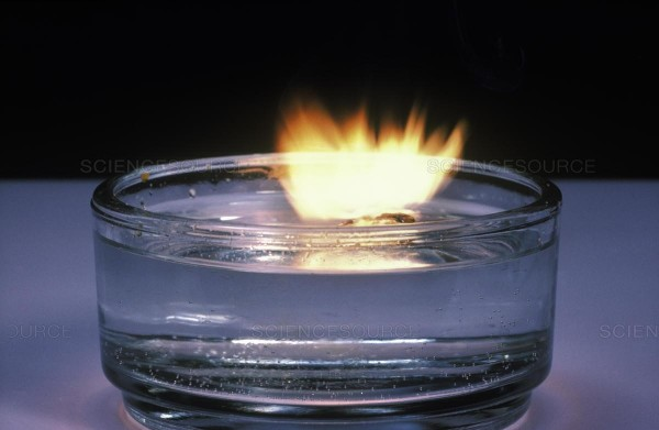 ماذا ينتج عن تفاعل الماء مع الصوديوم