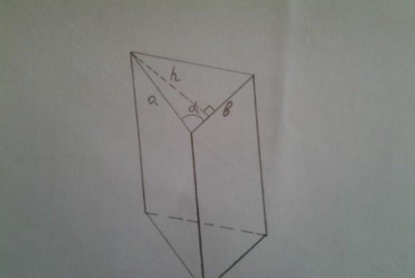 المساحة الإجمالية لسطح المنشور في الشكل أدناه تساوي 184 ملم 2