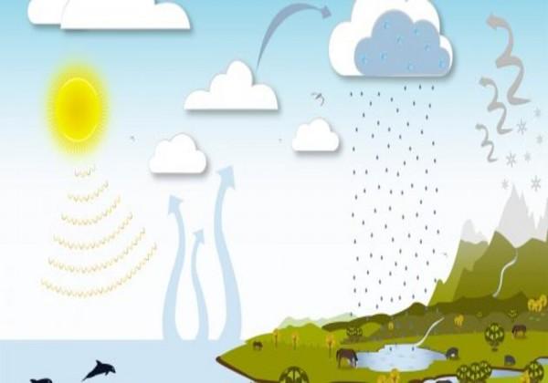 اذكر ثلاث عمليات فيزيائية تحدث في دورة الماء