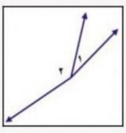 هل الزاويتان ٢ ∠ ، ١ ∠ في الشكل التالي متكاملتان